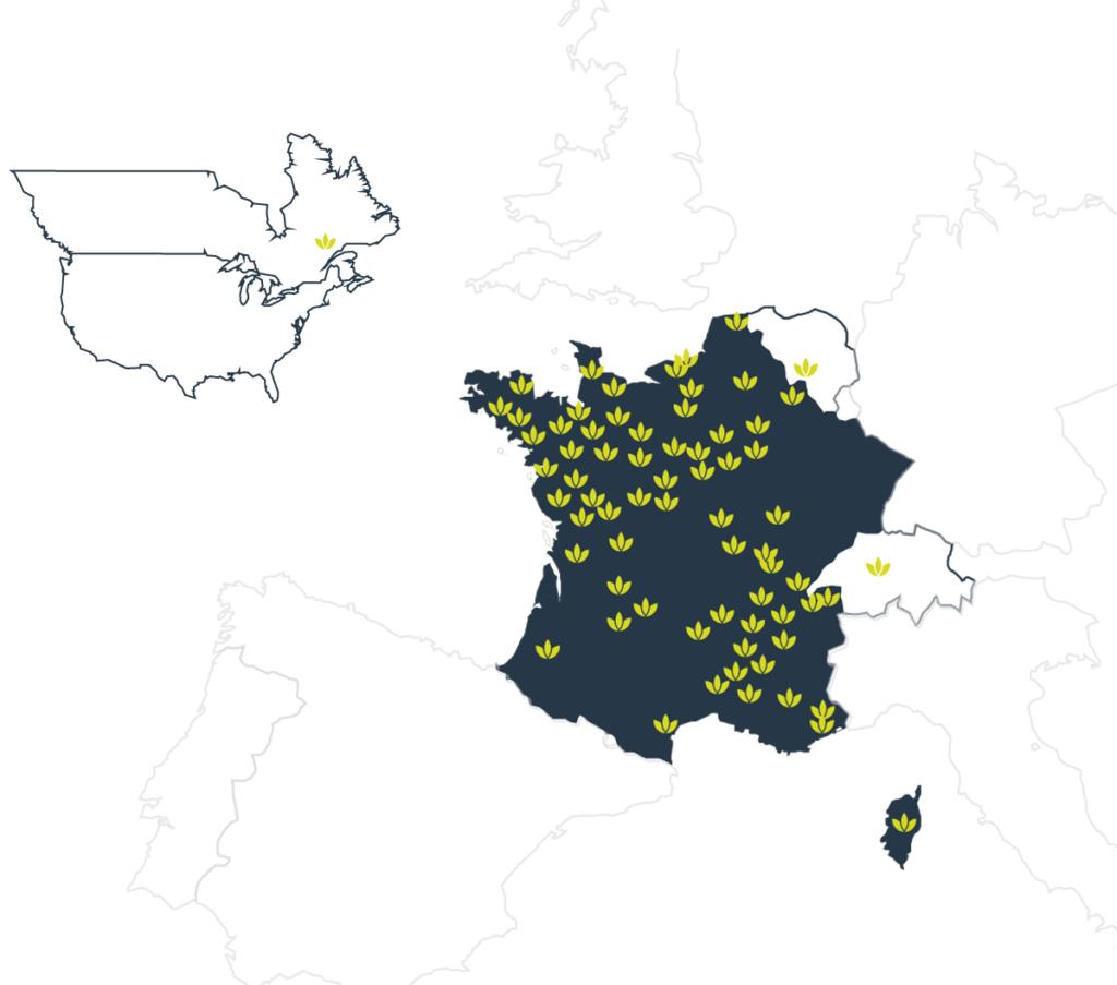 Carte des Toutilos